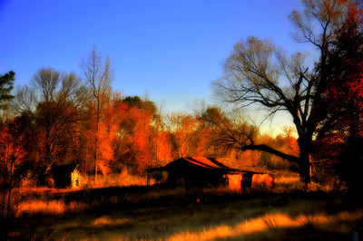 Barns and Sheds